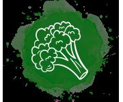 greenIcona